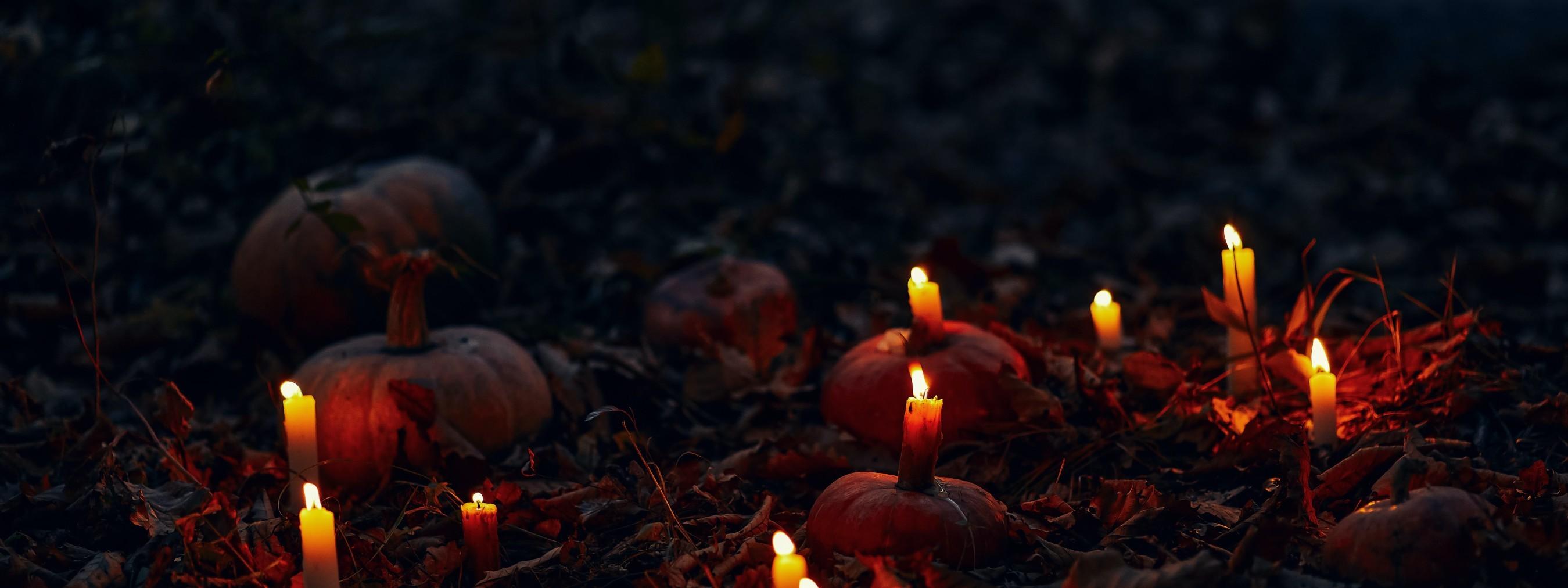 Les tissus plus ténébreux pour halloween
